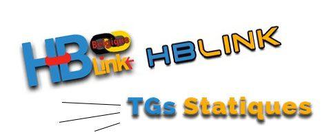 Choisir ses TGs statiques sur HBlink.fr